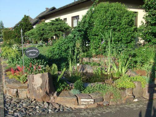 Vorgarten mit Feuchtbiotop