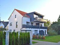 05-W2-3-Venusmuschel, W 2-3-Venusmuschel in Kölpinsee - Usedom - kleines Detailbild