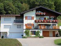 G�stehaus Ellmauer, Ferienwohnung Schafbergblick in Tiefgraben am Mondsee - kleines Detailbild