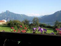 Dirnbergerhof (3 Blumen), Apartment Seeseite mit Panoramablick in Mondsee am Mondsee - kleines Detailbild