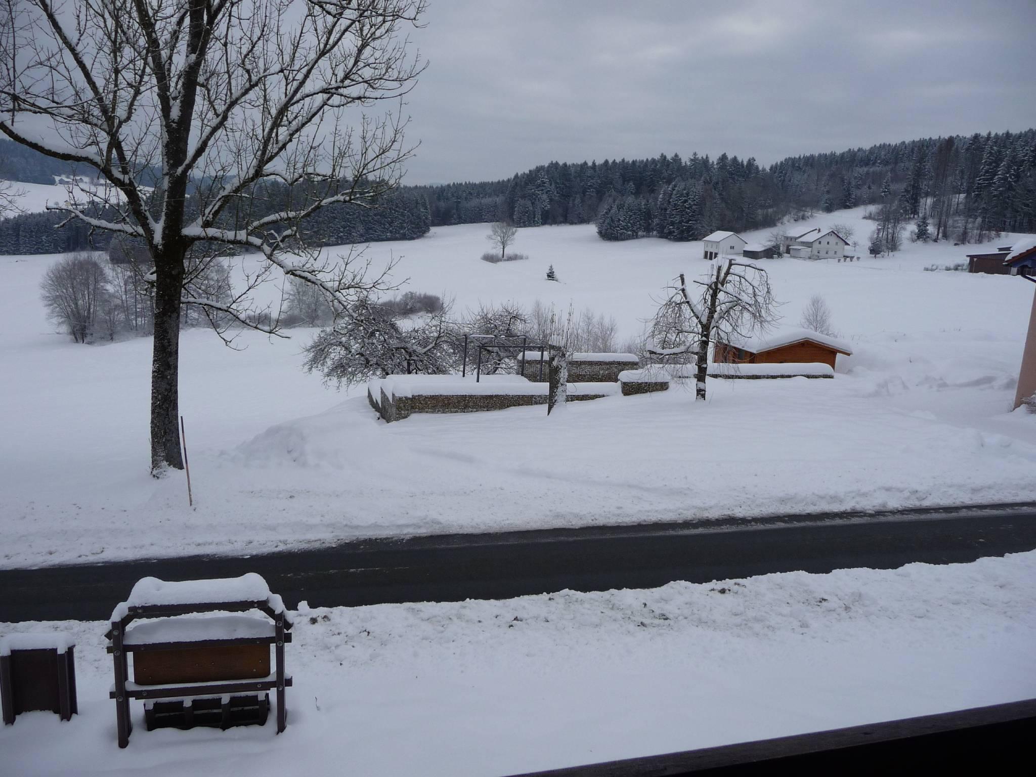 Blick vom Mittagsplatzl auf den Arbersee