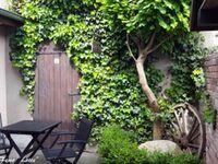 Ferienwohnungen ' Haus Lisa', Ferienwohnung 'Lisa' in Senftenberg - kleines Detailbild