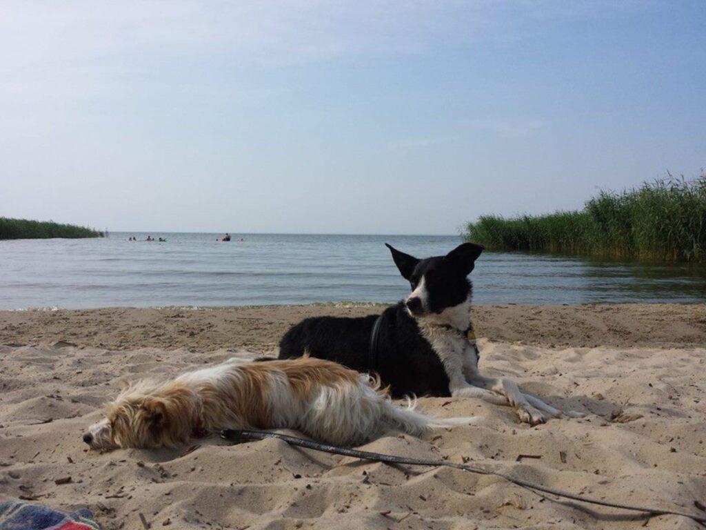 Ruhige Ferienwohnung in der Nähe des Stettiner Haf