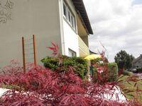 Ferienwohnung Sonnenblume in Bad König-Nieder-Kinzig - kleines Detailbild