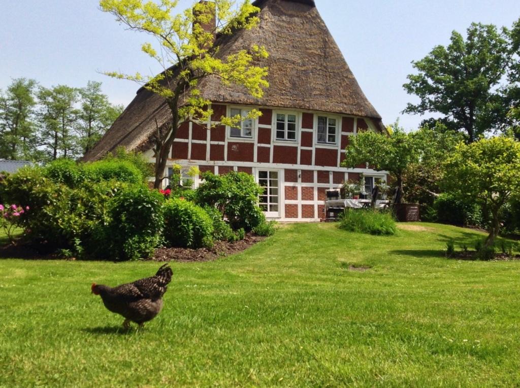 Exclusives reetdachhaus altes landhaus oste kaminofen - Kaminofen landhaus ...