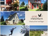 Ostsee SCHWEDENHÄUSER  in Breege-Juliusruh by Rügenplus, SONNENHAUS - Weißes Schwedenhaus - 1-Raum in Breege - Juliusruh auf Rügen - kleines Detailbild