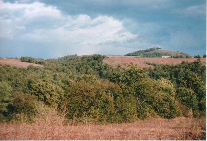 Blick vom Haus auf Mt. Becco