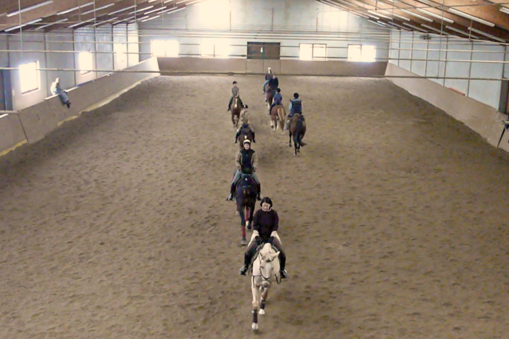 Haus der Pferde, Ferienwohnung für 6 Personen