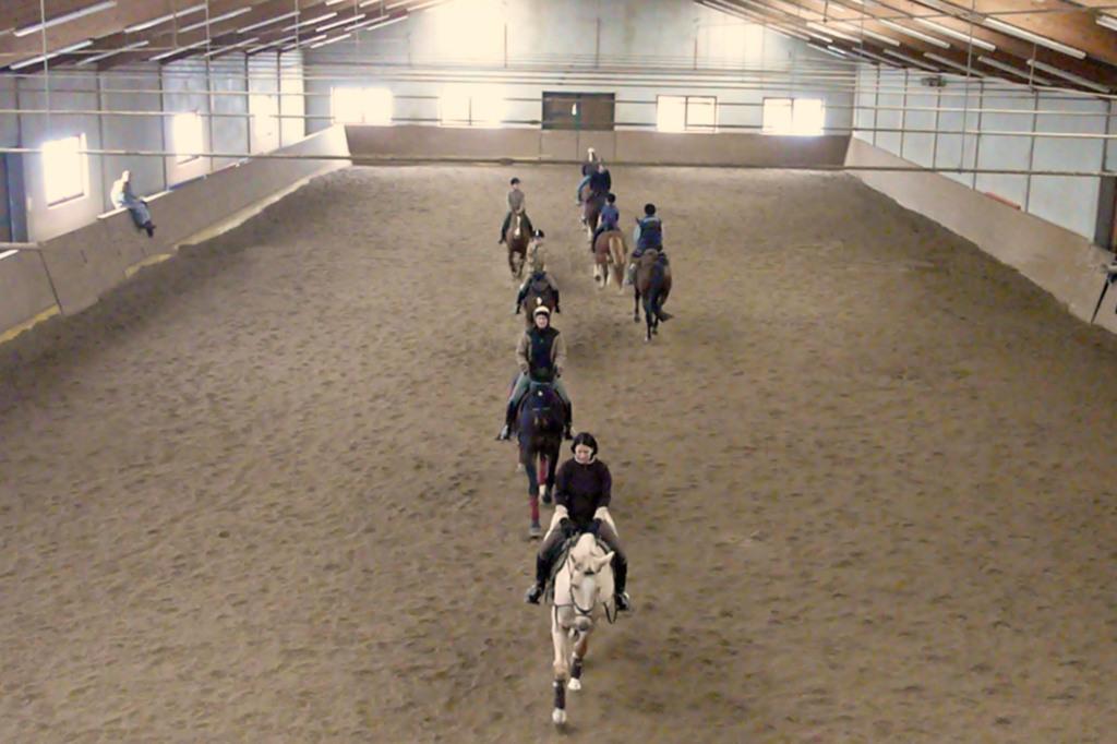 Haus der Pferde, Ferienwohnung für 3 Personen