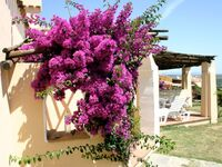 Sea Villas - Country Village, 3-Zimmer-Ferienhaus mit Gemeinschaftspool in Stintino - kleines Detailbild