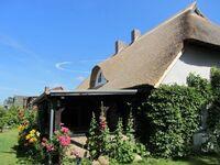 Koras Dachkammer in Ribnitz-Damgarten-Klockenhagen - kleines Detailbild
