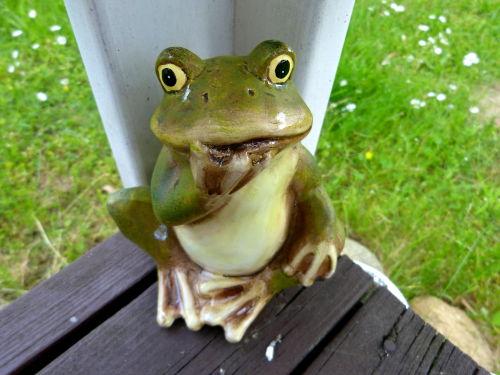 Alles Frosch - oder was?