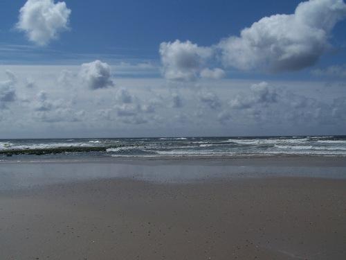die Nordseeküste
