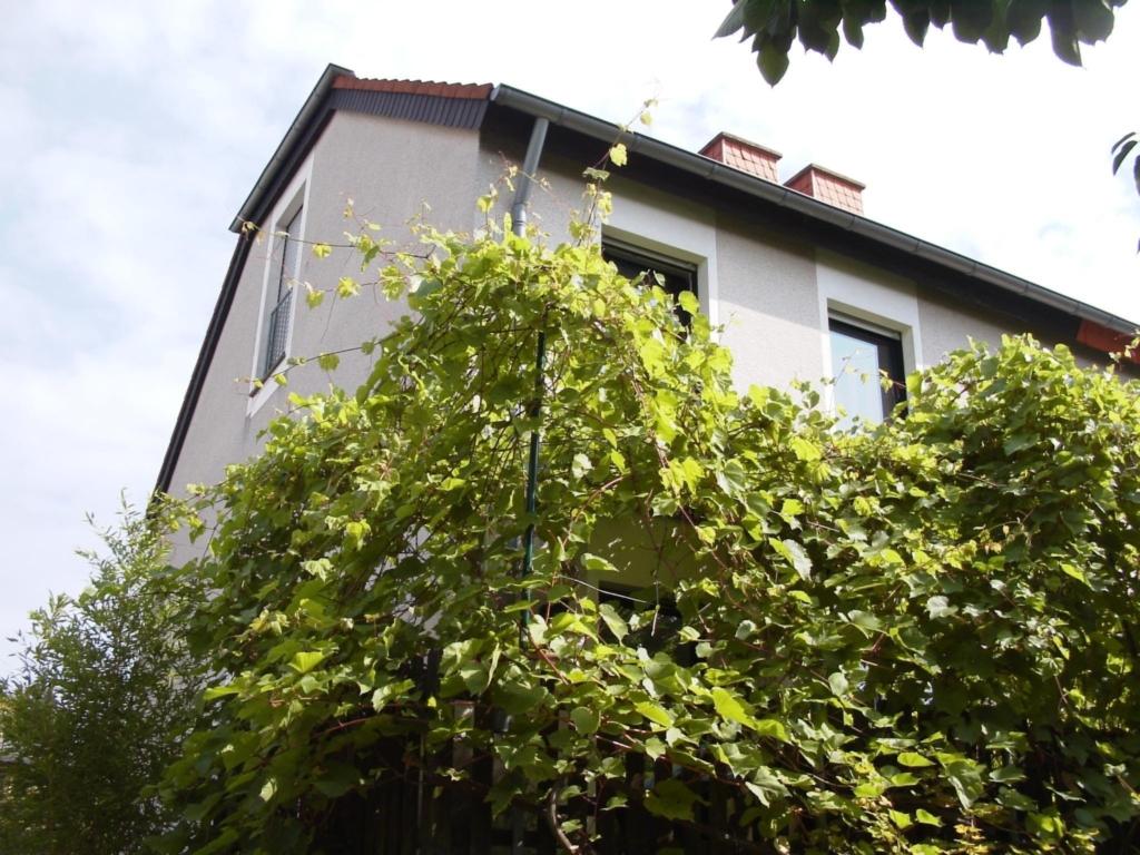 B&B am See, Dachstudio mit Seeblick 3-4 Personen
