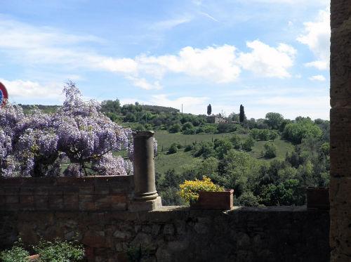 Petroio Blick - Monte Amiata