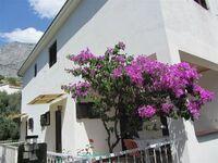 Apartment Lemaic 1 in Baska Voda-Krvavica - kleines Detailbild