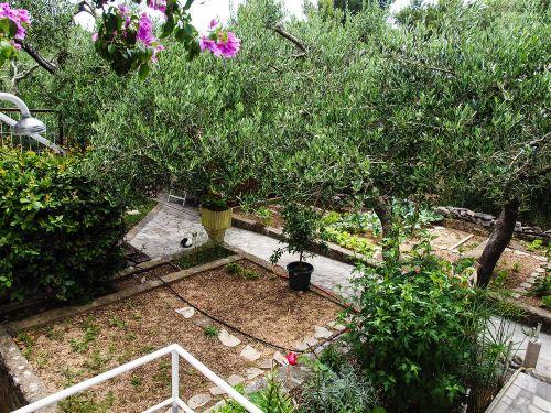 Unser Garten,fuer mitbenutzung v.Gaesten