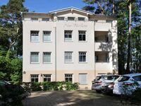 (Brise) Neue Villa Ernst, Ernst 2Zi - App.1 in Bansin (Seebad) - kleines Detailbild
