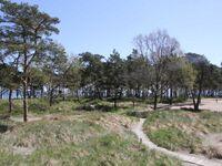 'V17' Strandresidenz-Appartement in Prora, Appartement 'V17' 80m² bis 6 Erw. + 1 Kleinkind in Prora auf Rügen - kleines Detailbild