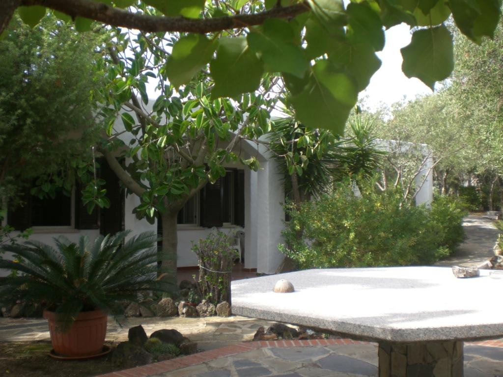 Wunderschöne Fewo in blühendem Garten, Appartement