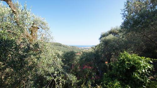 Zusatzbild Nr. 03 von Ferienwohnung Ca Gianca