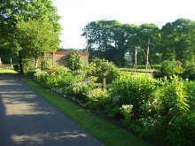 Gartenanlage - Gemüsegarten