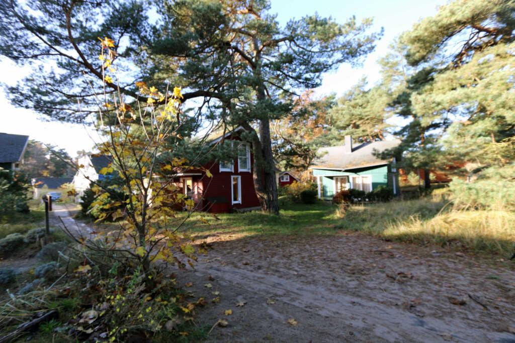 W.01 Strandhaus Dünenweg 17c mit Terrasse-Kamin, S