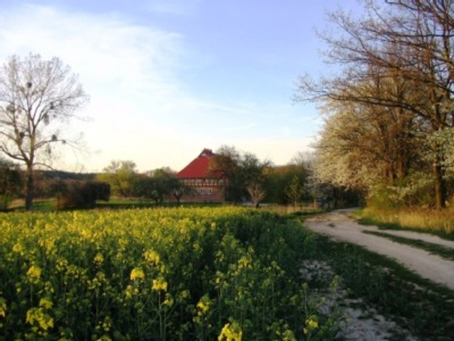 Landhaus Sch�nhof, Wohnung Romantik