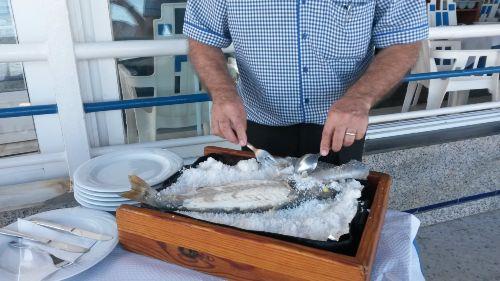 Fisch in der Salzkruste, ein Traum