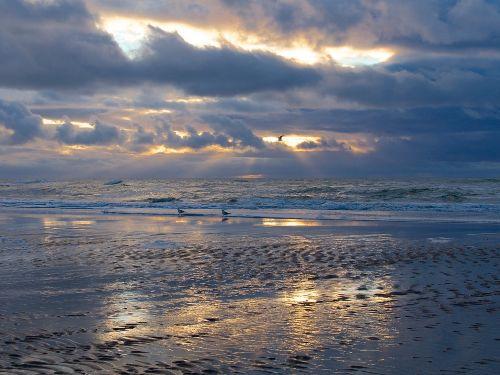 Strand Zud