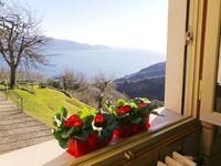 Villa Margherita in Tignale - kleines Detailbild
