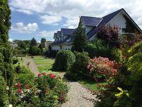 Appartementanlage 'Zur Seemöwe', Suite in Insel Poel (Ostseebad), OT Schwarzer Busch - kleines Detailbild
