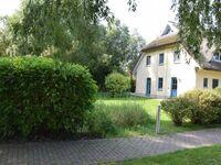 Reetdachhaus Holunder 4 mit Kamin und Sauna, REH Holunder 4 in Poseritz OT Puddemin - kleines Detailbild