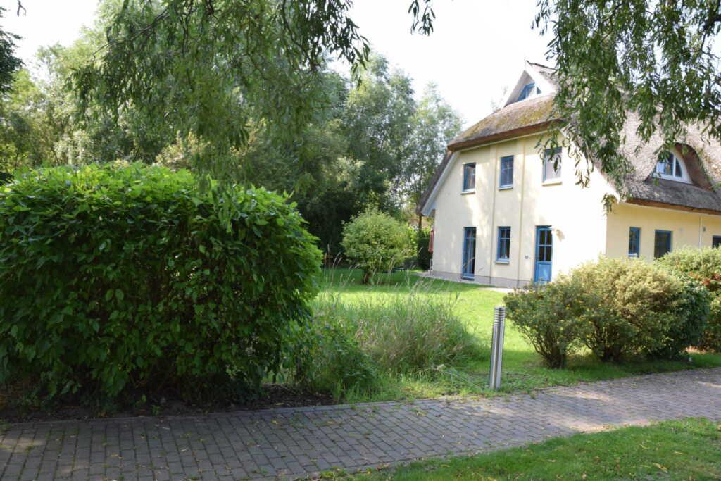 Reetdachhaus Holunder 4 mit Kamin und Sauna, REH H
