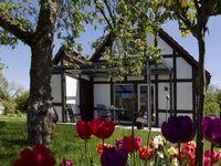 Ferienhaus Herbstprinz in Hollern-Twielenfleth - kleines Detailbild