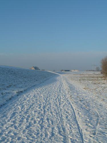 Winter vorm Deich