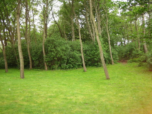 ruhiger Garten an einem Wäldchen