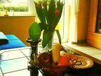 **** Ferienwohnung Sonnenblume mit Sauna für 2-3 Personen., Ferienwohnung Sonnenblume mit Sauna in Daun - kleines Detailbild