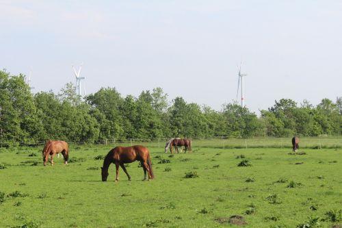 Umgebung von Hof Maiholm