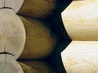 Blockhausferien R�gen - Meerblick - eigene Sauna, 'Alexander von Humboldt' in Sassnitz auf R�gen - kleines Detailbild