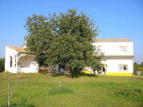 gr. Affenbrotbaum direkt an der Casa