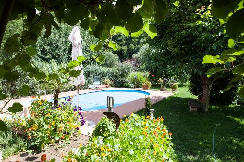 Pool im Gartenbereich