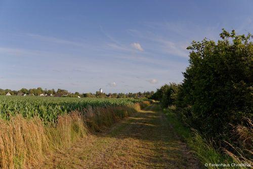 Felder rund um das Ferienhaus Christelhoi