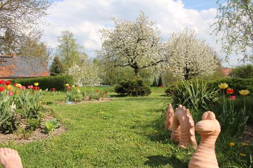 Unserer Gartendrachen