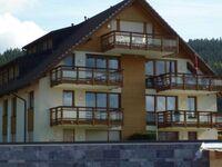 Haus Residenz am See, Wohnung Nr. 8, Wohnung Nr. 8 in Titisee-Neustadt - kleines Detailbild