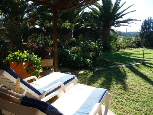 Blick von der Terrasse, Palmengarten