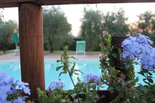 Schwimmbad von der Terrasse aus
