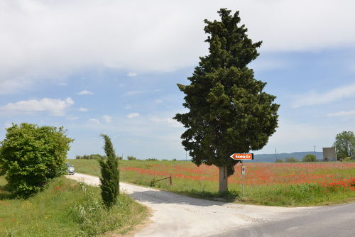 Zufahrt zum Agriturismo Saletta