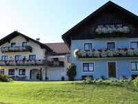 Pension Herned **, Ferienwohnung Nr. 1 in Mondsee am Mondsee - kleines Detailbild