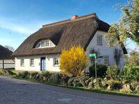 Haus Ketzenberg 1 'Lütt Mööv', Wohnung (1) in Groß - Zicker - kleines Detailbild